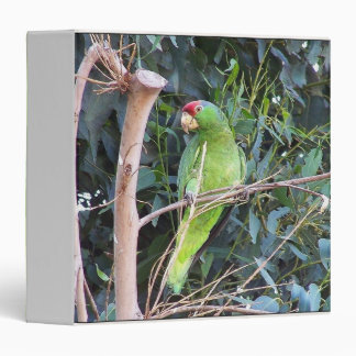Wild Amazon Parrot Birds Animals Wildlife 3 Ring Binder
