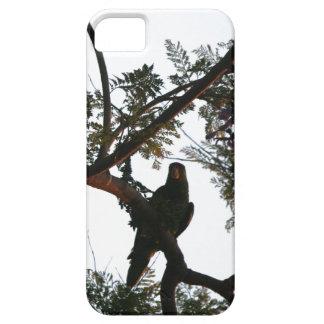 Wild Amazon Parrot Birds Animals Wildlife iPhone SE/5/5s Case