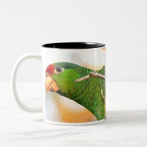 Wild Amazon Red Parrot Mug