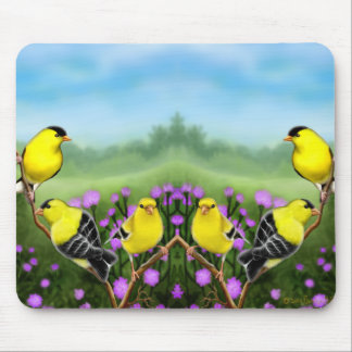 Wild American Goldfinches Mousepad