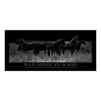 Wild American Horses Poster