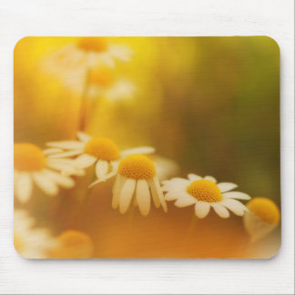 Wild and beautiful mouse pad