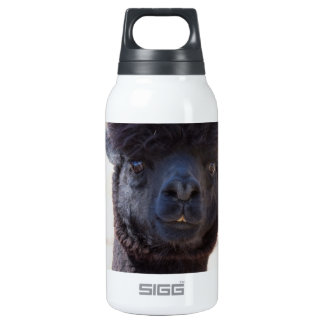 Wild and Crazy Alpaca Hair Style Thermos Bottle