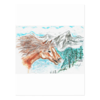 Wild And Free Postcards