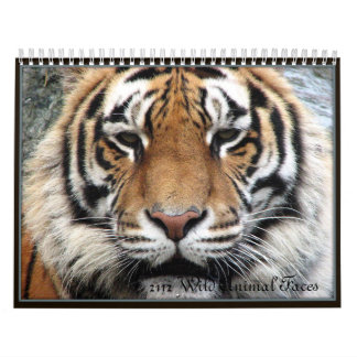 Wild Animal Faces Wall Calendars