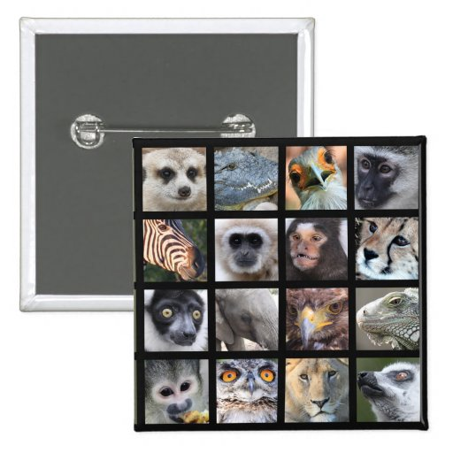 Wild Animal Faces -- Mammals, Reptiles, Birds Buttons