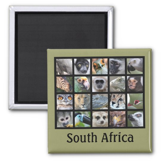 Wild Animal Faces -- Mammals, Reptiles, Birds Magnet