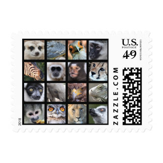 Wild Animal Faces -- Mammals, Reptiles, Birds Postage