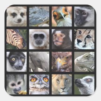 Wild Animal Faces -- Mammals, Reptiles, Birds Stickers