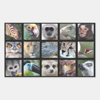 Wild Animal Faces -- Mammals, Reptiles, Birds Rectangle Stickers