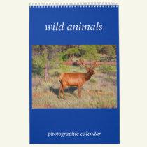 wild animal photo calendar