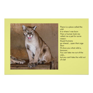 Wild Animal Poster