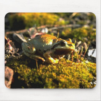 Wild Animals 11 Mouse Pads