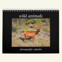 wild animals 2019 calendar