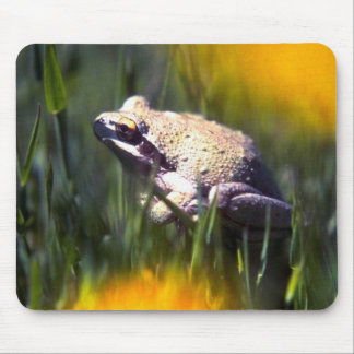 Wild Animals 26 Mouse Pads