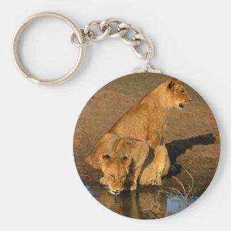 wild animals 300 keychain