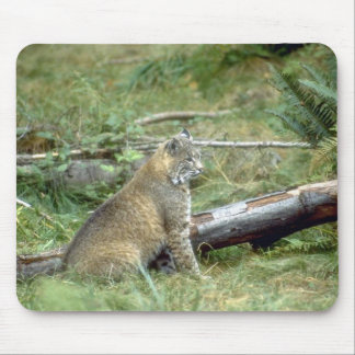 Wild Animals 32 Mouse Mat