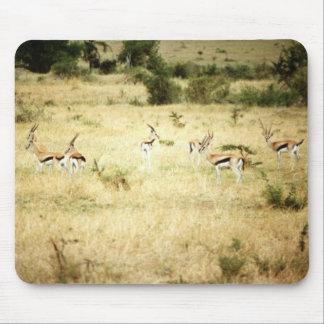 Wild Animals 51 Mouse Mat