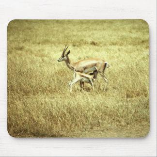 Wild Animals 52 Mouse Pad
