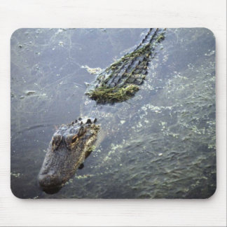 Wild Animals 64 Mouse Pads