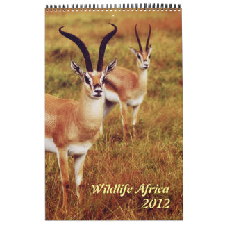 Wild animals Africa safari 2012 Calendar
