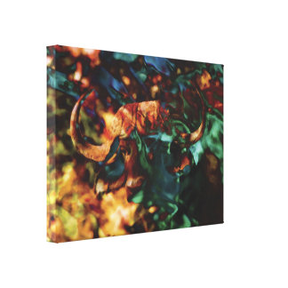 wild animals buffalo art abstract stretched canvas prints