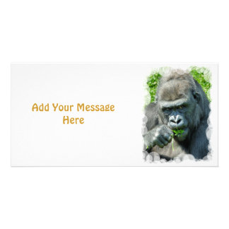 WILD ANIMALS - GORILLAS PHOTO CARD