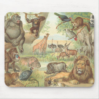 Wild Animals of Africa Mouse Pad