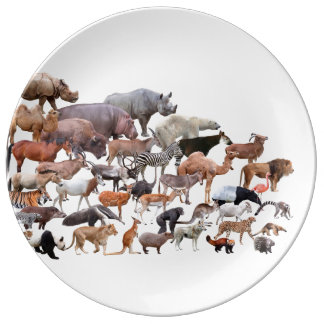 Wild Animals Porcelain Plate