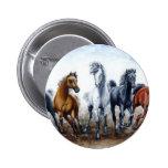 Wild Arabians Pins