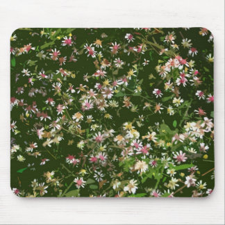 Wild Asters Mousepad