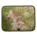 Wild Azalea Blossoms = Springtime Organizer