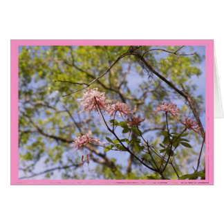 Wild Azaleas Floral Notecard