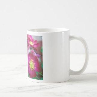 wild baby roses classic white coffee mug