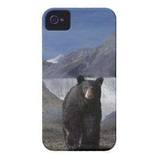 Wild Bear Animal-lovers Wildlife Gift iPhone 4 Case