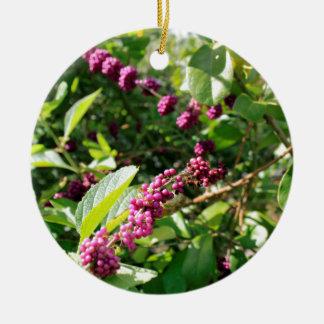 Wild Beautyberry Bush Outside in Sunny Florida Day Ceramic Ornament