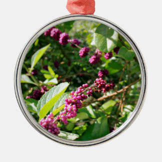 Wild Beautyberry Bush Outside in Sunny Florida Day Metal Ornament