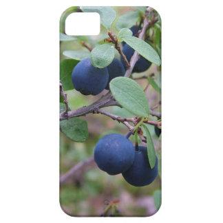 Wild Berries iPhone 5 Case-Mate