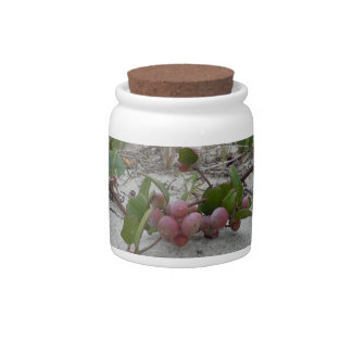 Wild Berries on the Beach Candy Jars