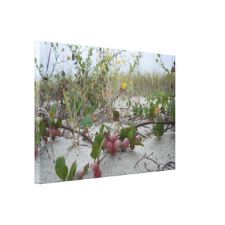 Wild Berries on the Beach Canvas Print