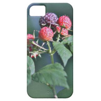 Wild berries photo iPhone SE/5/5s case
