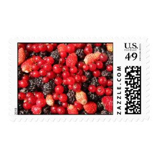 wild berries postage