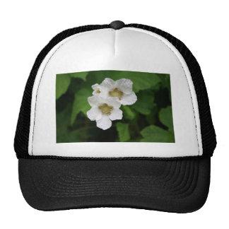 Wild Berry Blooms Trucker Hat