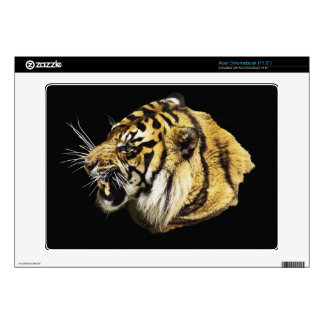 Wild Big Cats Animal-lover Design Skins For Acer Chromebook
