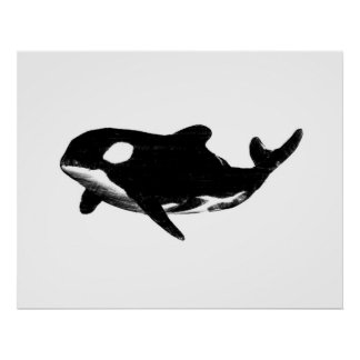 Wild Billy Whale ~Print~ Poster