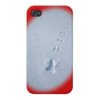 Wild Bird Footprints in Snow Cover For iPhone 4