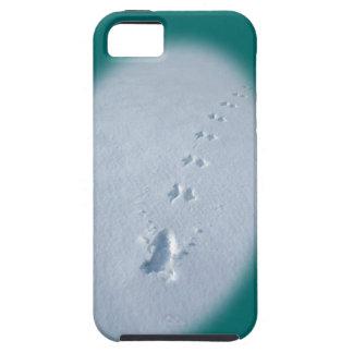 Wild Bird Footprints in Snow iPhone 5 Cover