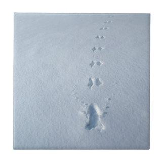 Wild Bird Footprints in Snow Ceramic Tile