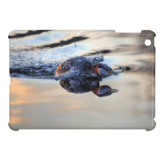 Wild Bird for Bird-lovers iPad Mini Cases