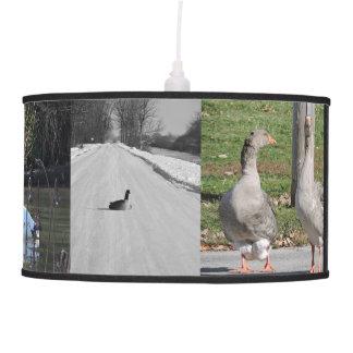 Wild bird hanging lamp